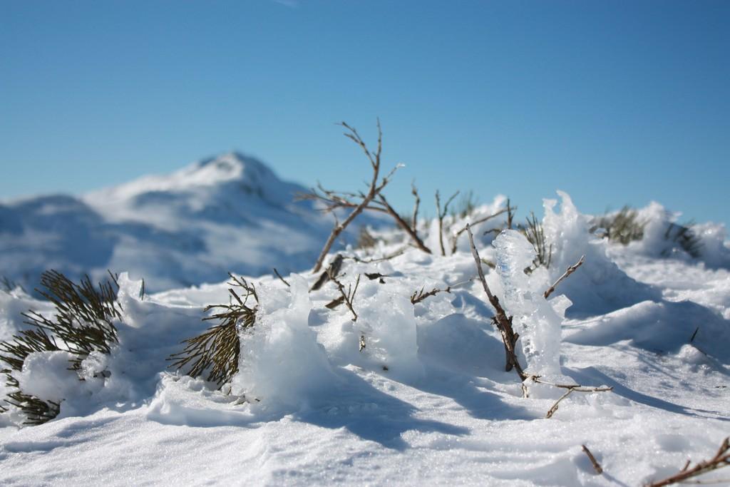guide accompagnateur montagne randonnée cantal