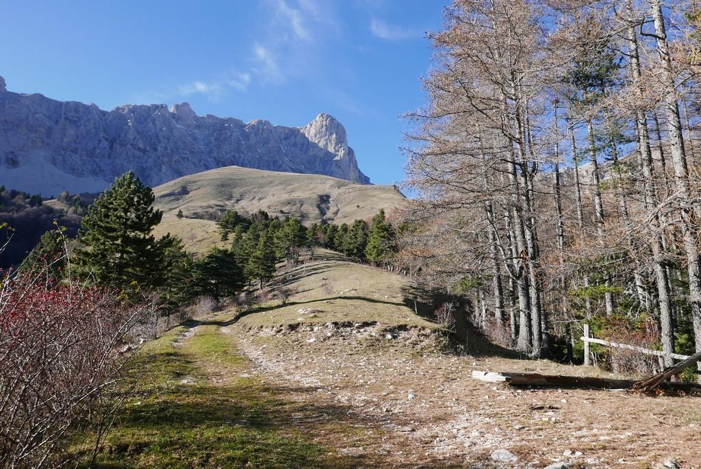 dévoluy guide montagne accompagnateur randonnée