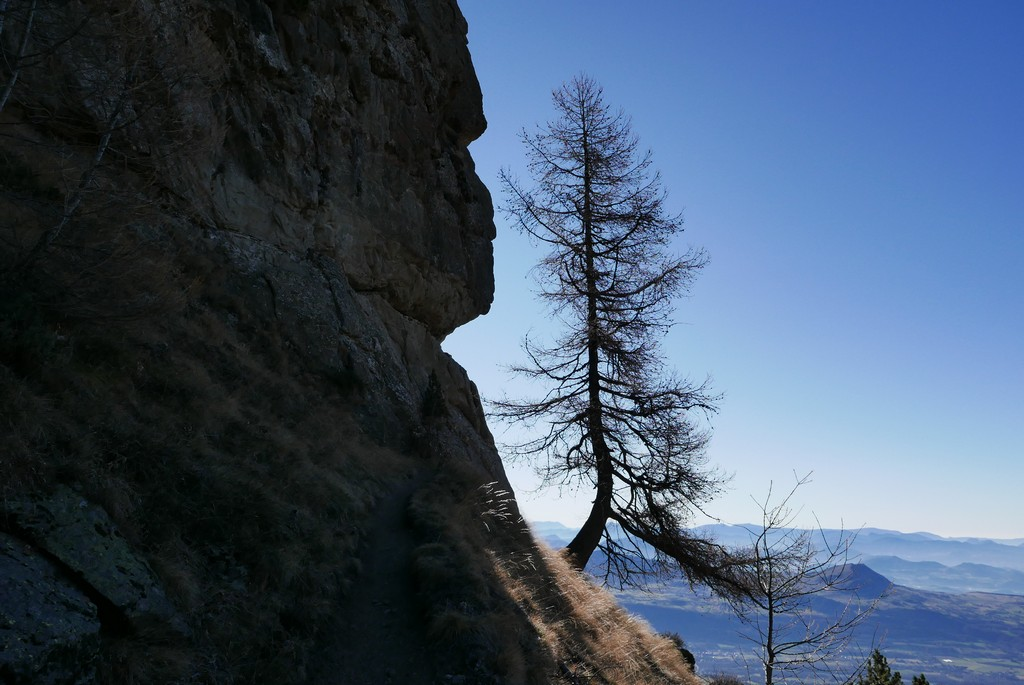 champsaur accompagnateur guide montagne randonnée écrins